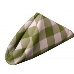 Napkins Checkered 17 X 17 Inch (10 Units) Hunter Green By Broward Linens