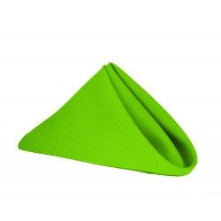 Napkins Polyester 17 X 17 Inch (6 Units) Apple Green By Broward Linens
