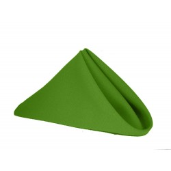 Napkins Polyester 20 X 20 Inch (6 Units) Apple Green By Broward Linens