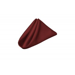 Napkins Satin 17 X 17 Inch Brown (6 Units) By Broward Linens